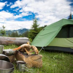Tent Campsite Ronald Washington